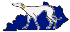 Kentucky Greyhound Placement -- Greyhound Rescue and Adoption